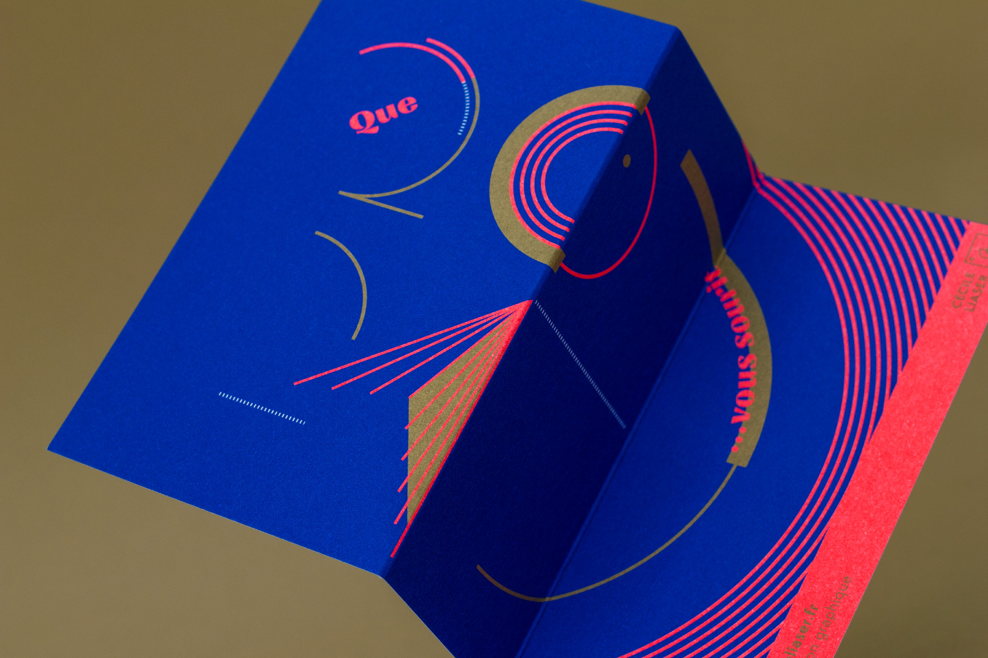 Carte de vœux - 2 plis accordéons